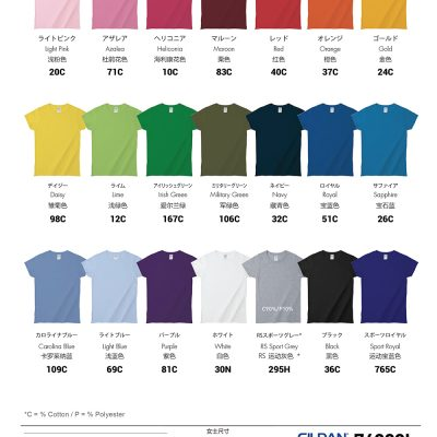 Costumice Design Ladies Premium Cotton T-Shirt Color Options